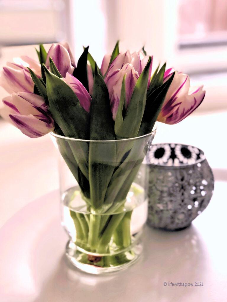 Momente des Glücks-Tulpen